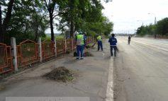 Caterincă pe Viaduct, la 48 de ore de la ultimatumul dat de primarul Stan (foto)