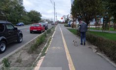 Nu doar bicicliștii, nici cățeii nu suportă pistele pentru bicicliști din Galați