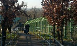 De Crăciun, Grădina Zoo din Galați este întredeschisă