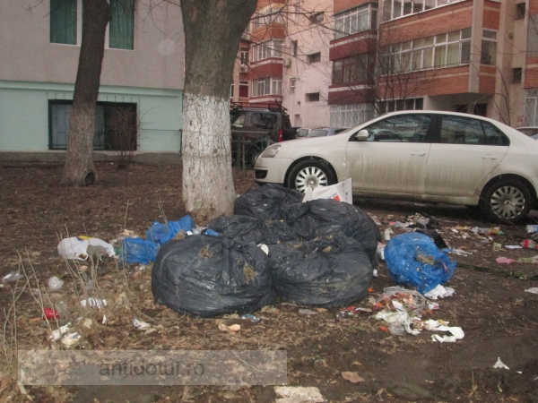 Mîrlanii de centru sunt miopi: au aruncat gunoiul pe spațiul verde, la vreo sută de metri de tomberon