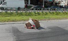 La Galați apare un nou concept eco: groapa reciclabilă