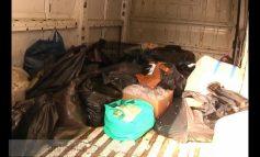 La Piaţa basarabenilor, mielul de Paşti latră iar comercianții de lapte umblă cu cioara vopsită