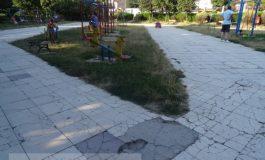 Parcul Cloșca arată fix ca Galațiul: plin de gropi, buruieni și maidanezi (foto)
