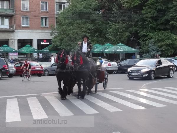 Aroganță 2016: Renato merge cu trăsura prin centrul Galațiului (foto)