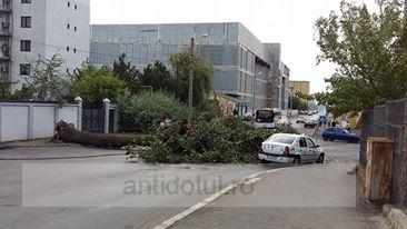 Un copac putred a blocat o stradă și a lăsat în beznă o parte a orașului Galați