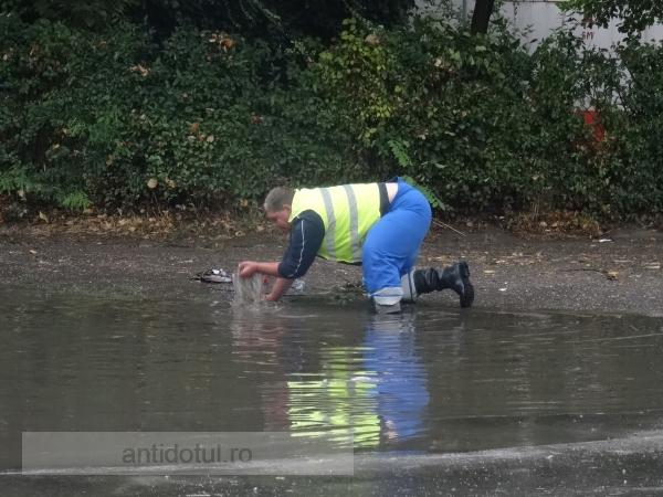 A plouat, ți s-a-nfundat! (foto)