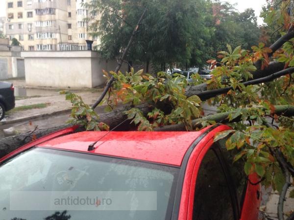 Galați, jurnal de front: mașini distruse, copaci doborîți, străzi inundate